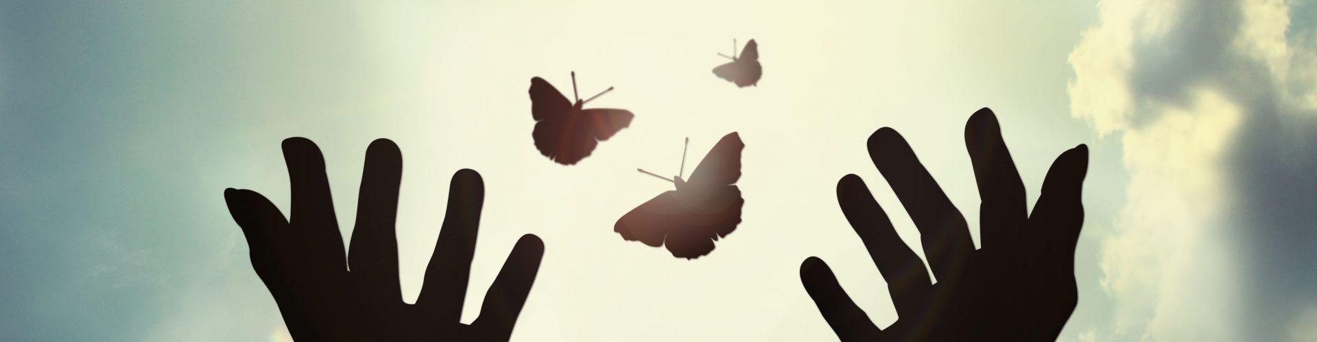 """""""A solidariedade é o sentimento que melhor expressa o respeito pela dignidade humana"""" Franz Kafka"""