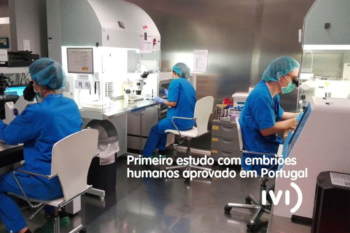 Primeira investigação com embriões humanos aprovada em Portugal