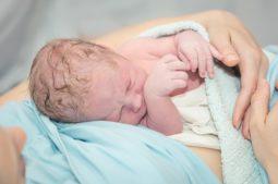 Estudo IVI mostra que criopreservar embriões é seguro